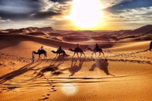 Day Trips & Desert Tours from Marrakech